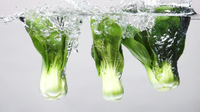 vidéos et rushes de super ralenti: bok choy tomber dans l'eau douce sur le fond blanc - salade verte