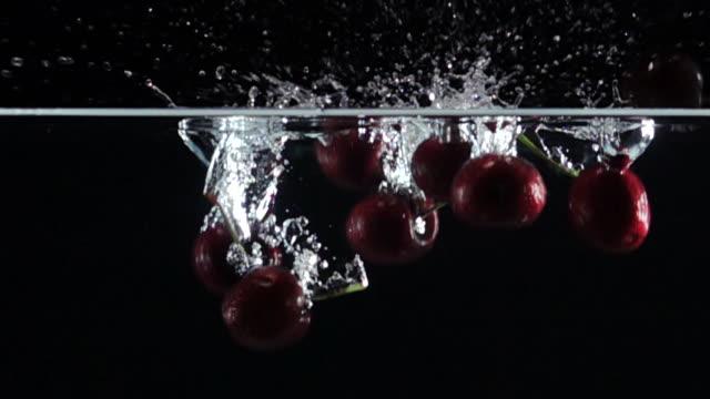 vidéos et rushes de super ralenti: cherry drop dans l'eau douce sur fond noir - baie eau