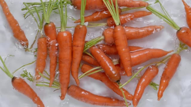 super slow motion of carrot - vegan food stock videos & royalty-free footage