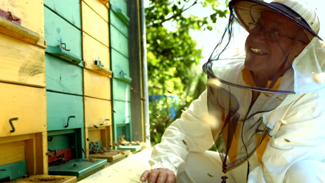 HD Super Slow-Mo: Beekeeper Looking At The Bees