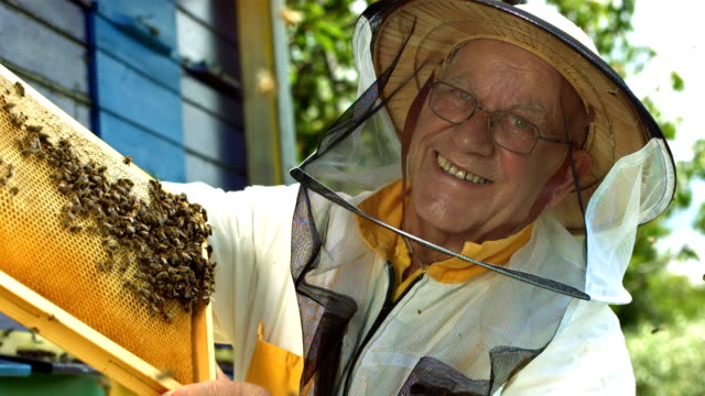 HD Super Slow-Mo: Beekeeper With A Honeycomb