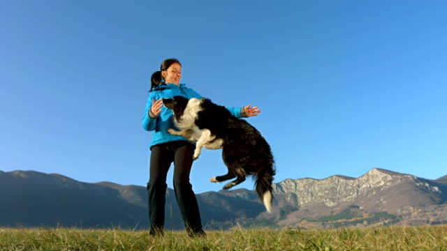 HD Super Slow-Mo: Border Collie Jumping Into Arms