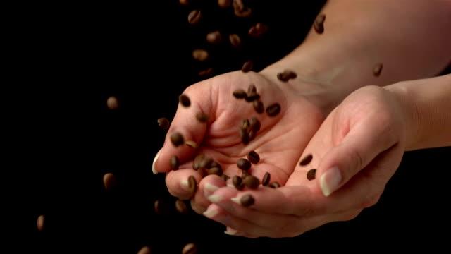 super zeitlupe, hd: fangen kaffee kaffeebohnen - gefangener stock-videos und b-roll-filmmaterial
