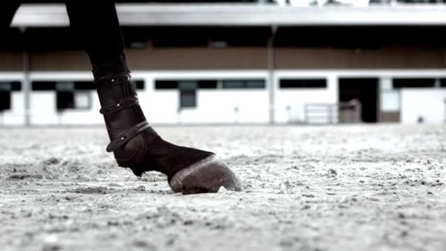 Super Zeitlupe, HD: Sand und springen in Kicking Horse