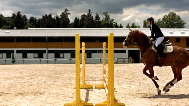 hd super slow-mo: horse rider jumping over oxer - horse stock videos & royalty-free footage