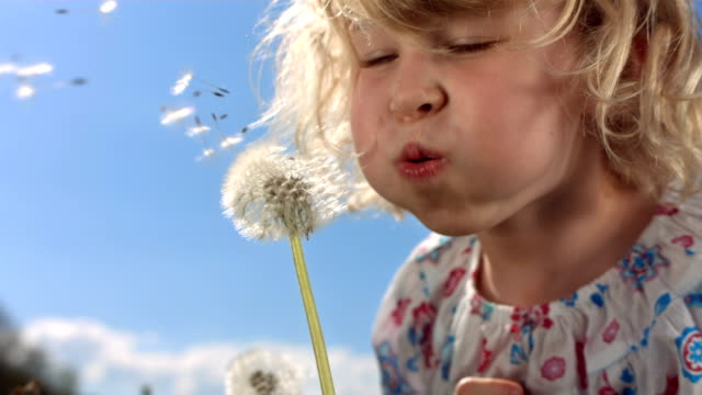 HD Super Slow-motion: Bambina soffiare semi di tarassaco