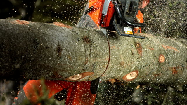 hd super slow-mo: logger bucking a log - chainsaw stock videos & royalty-free footage