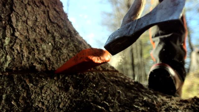 Super Zeitlupe, HD: Logger auf den Keilabsatz aus Holz teilen
