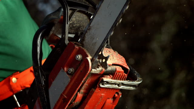 HD Super Slow-Mo: Lumberjack With A Chainsaw