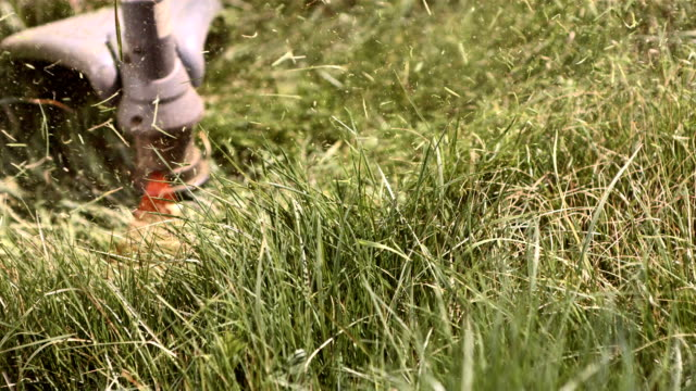 hd super slow-mo: mowing grass with weed trimmer - lawn mower stock videos and b-roll footage
