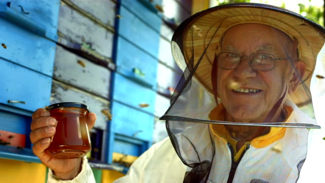 hd super slow-mo: portrait of a beekeeper - hobbies stock videos & royalty-free footage
