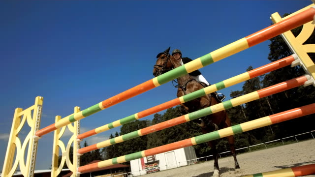 HD Super Slow-Mo: Show Hunter Jumps Over Oxer