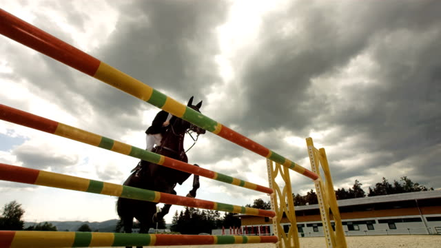 hd super slow-mo: show jumping on a stormy day - horseback riding stock videos & royalty-free footage