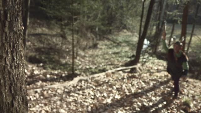 stockvideo's en b-roll-footage met hd super slow-mo: throwing hatchet at a tree - bijl