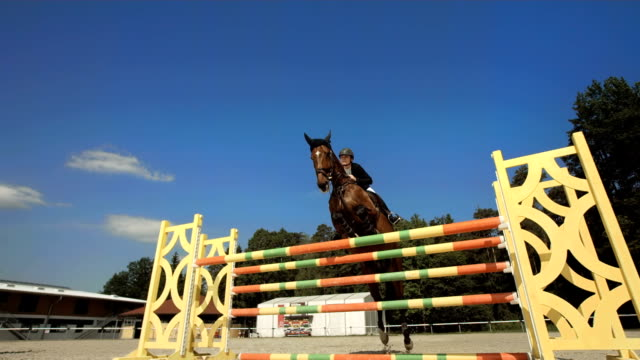 hd super slow-mo: training a jump over oxer - horseback riding stock videos & royalty-free footage