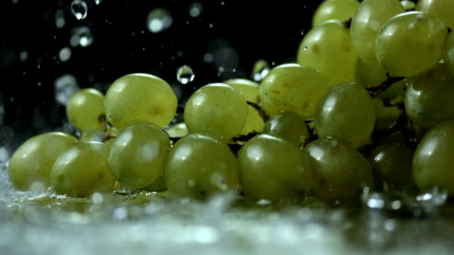 stockvideo's en b-roll-footage met hd super slow-mo: water drops falling on grapes - sappig