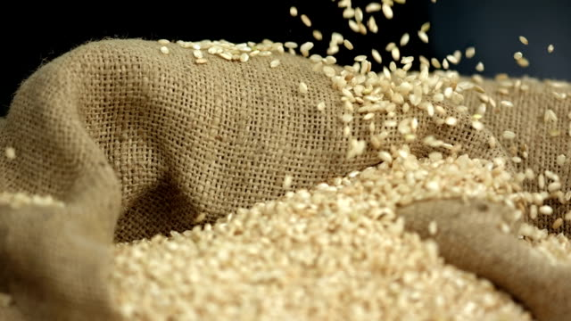 HD Super Slow-Mo: Wheat Grains Falling On Sack