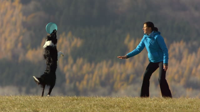 HD Super Slow-Mo: Woman And Dog Playing With Plastic Disk