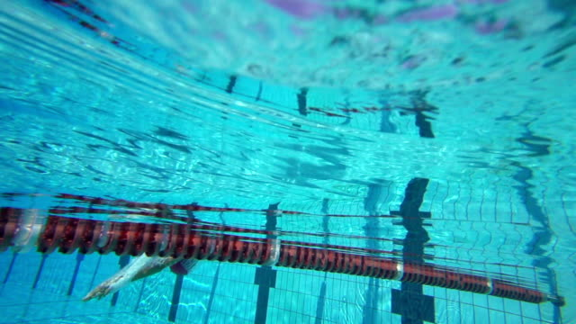 hd super slow-mo: young woman starting breaststroke race - cap stock videos and b-roll footage