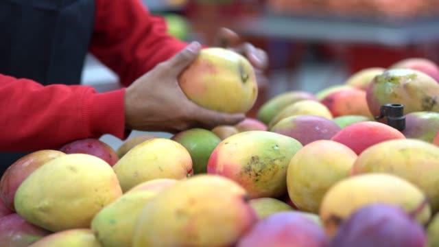 supermarket worker choosing mango - mango stock videos & royalty-free footage