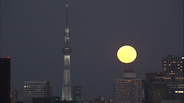 supermoon 2018 with tokyo skytree, japan - supermoon stock videos & royalty-free footage