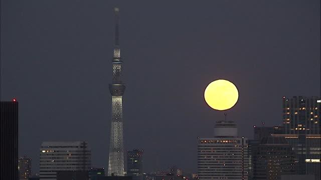 supermoon 2018 with tokyo skytree, japan - スカイツリー点の映像素材/bロール