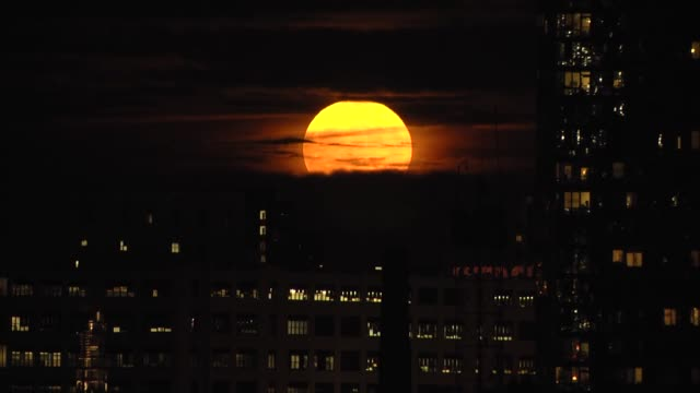 a supermoon rises over new york city on november 14 2016 the biggest and brightest moon in almost 69 years lit up the sky on monday the full moon... - supermoon stock videos & royalty-free footage