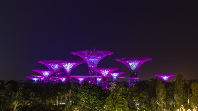 vidéos et rushes de supertree grove singapore, supertrees illuminated at night, time lapse vidéo - couleur verte