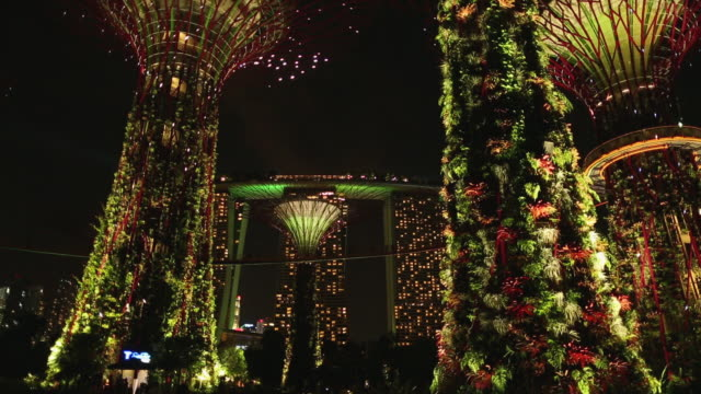 WS Supertrees and Marina Bay Sands hotel in Gardens by the Bay