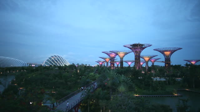 ws supertrees ands cool houses in gardens by the bay at dusk - sustainable tourism stock videos & royalty-free footage