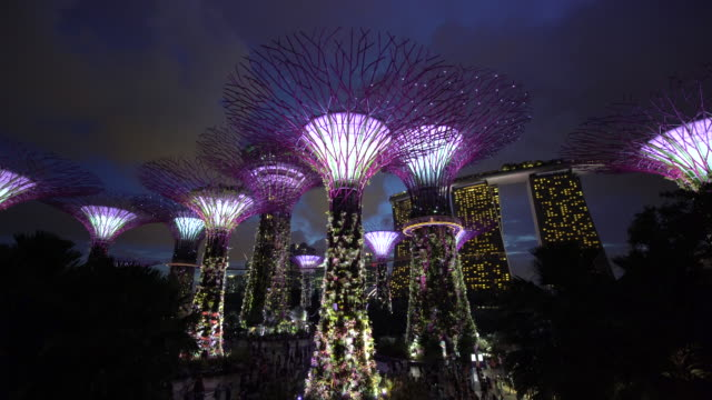 supertrees at gardens by the bay, illuminated at night, singapore, southeast asia - marina bay sands stock videos and b-roll footage