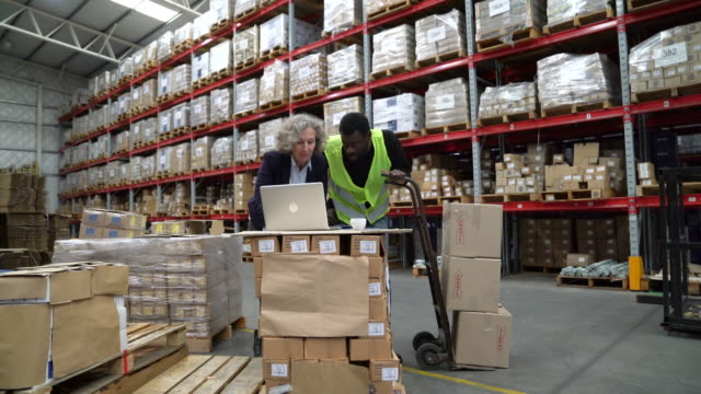 supervisor and worker using laptop in warehouse - push cart stock videos & royalty-free footage