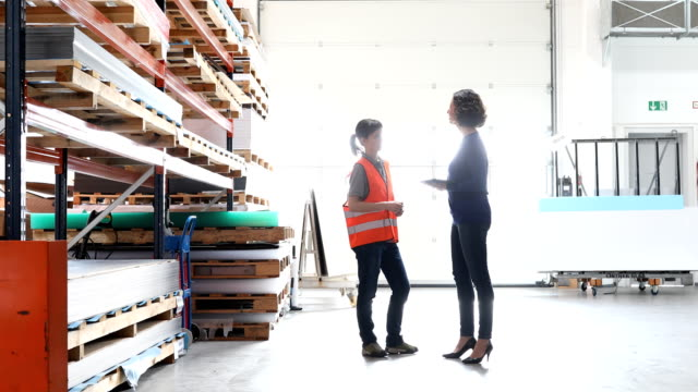 作業者と在庫在庫を確認するスーパーバイザー - 倉庫作業員点の映像素材/bロール
