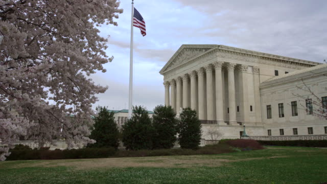 supreme court of the united states in the springtime with cherry trees in washington, dc - american politics stock videos & royalty-free footage