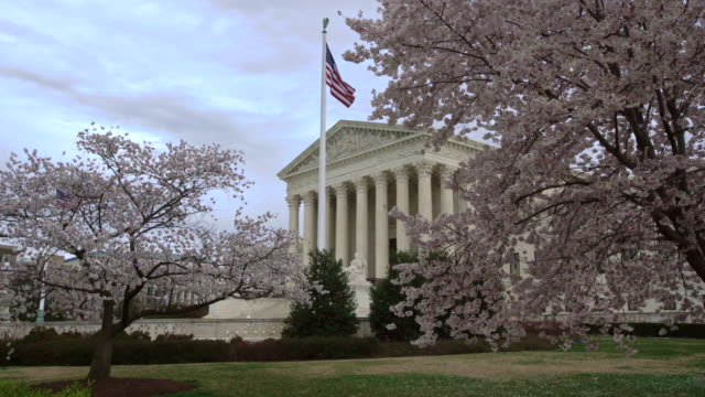 supreme court of the united states in the springtime with cherry trees in washington, dc - oberstes bundesgericht der usa stock-videos und b-roll-filmmaterial
