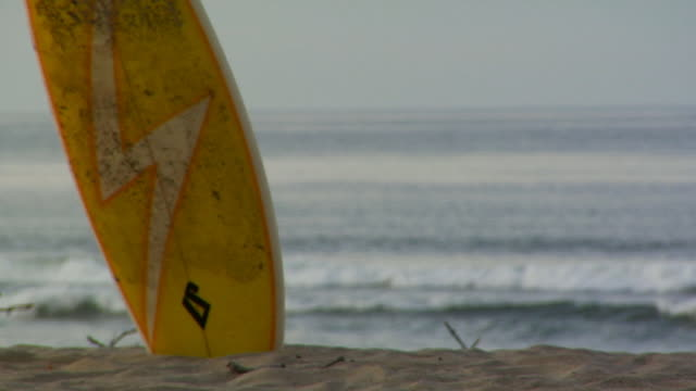 cu, r/f, surf board on beach, north truro, massachusetts, usa - surfbrett stock-videos und b-roll-filmmaterial