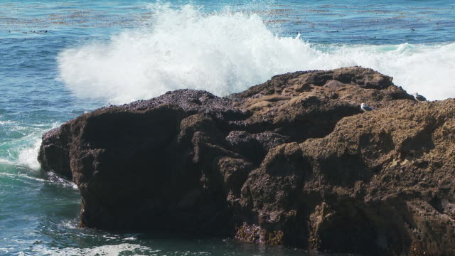 surf crashing against rocky shoreline and small inlet - inlet stock videos and b-roll footage