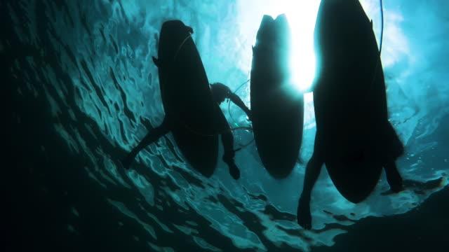 surf travel - surfbrett stock-videos und b-roll-filmmaterial