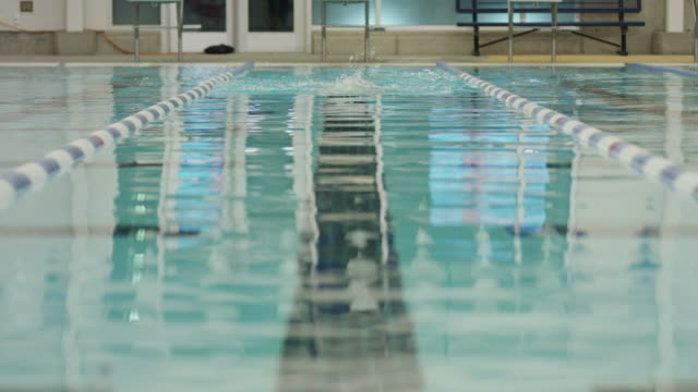 vidéos et rushes de surface level view of girl swimming breaststroke in swimming pool / provo, utah, united states - provo