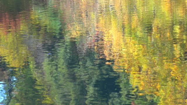 秋の湖の表面。 - 湖点の映像素材/bロール
