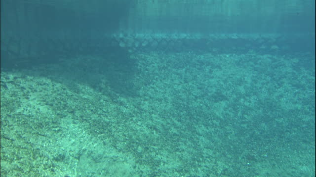 surface of benten-ike to underwater. - groundwater stock videos and b-roll footage