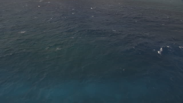 surface of pacific ocean, tahiti, french polynesia - tahiti stock videos and b-roll footage