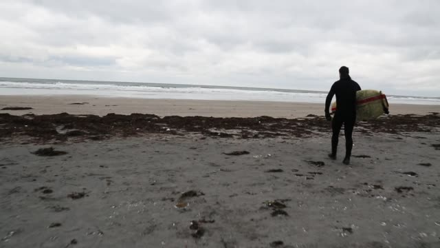 surfer carrying surfboard to beach - wetsuit stock videos & royalty-free footage