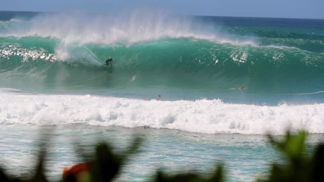 vídeos de stock, filmes e b-roll de surfer catching a big wave in pipeline, hawaii - pipeline wave