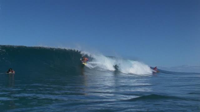 vídeos de stock, filmes e b-roll de sm ws surfer moving toward camera in pipeline wave/ ms wave washing over camera/ oahu, hawaii - pipeline wave
