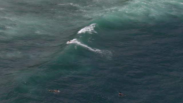 a surfer rides a rough wave, then wipes out. - falla av bildbanksvideor och videomaterial från bakom kulisserna