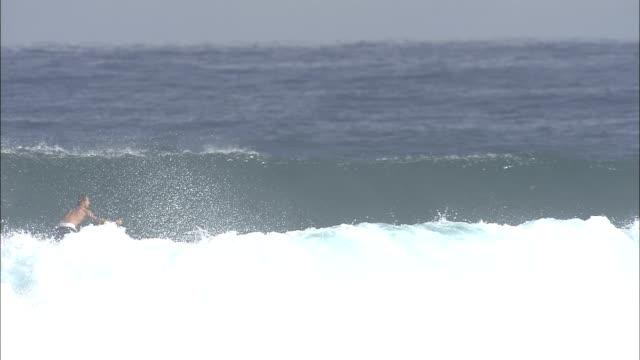 a surfer rides a wave and wipes out. - falla av bildbanksvideor och videomaterial från bakom kulisserna