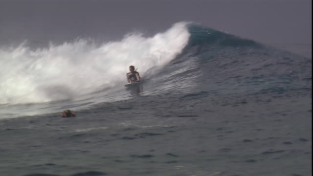 a surfer rides a wave on the south pacific ocean. - south pacific ocean stock videos & royalty-free footage