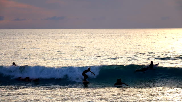 surfer rides wave silhouette - water sports equipment stock videos and b-roll footage