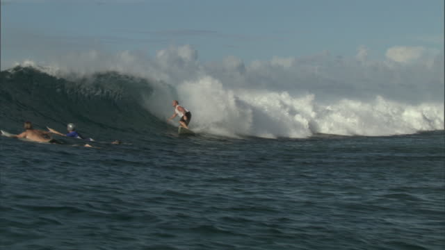 surfer rides wave towards shore then falls off, pohnpei, fsm - pantaloncino da bagno video stock e b–roll